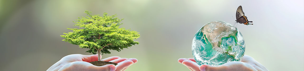 Granulco - granules de bois - écologique