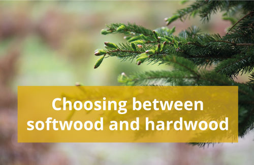 Choosing between softwood and hardwood